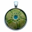 Kézműves világos zöld, virág alakú porcelán korong (25mm)
