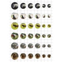 Lovak-3 Üveglencsés ékszerpapír több méret A5