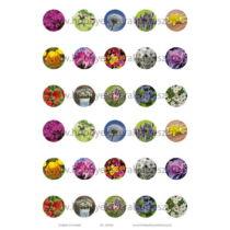 Virágok-3 Üveglencsés ékszerpapír 20mm 15 féle minta A5