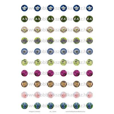 Virágok-3 Üveglencsés ékszerpapír 12mm 10 féle minta A5