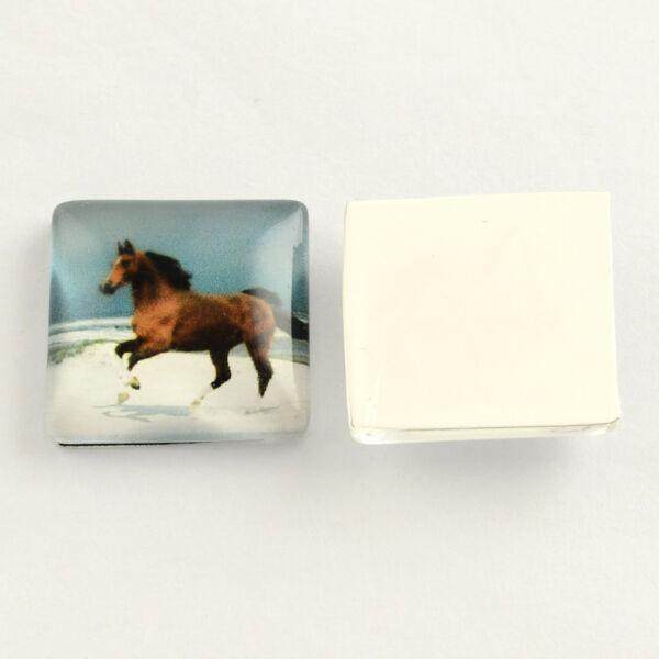 20x20mm-es ló mintás üveglencse