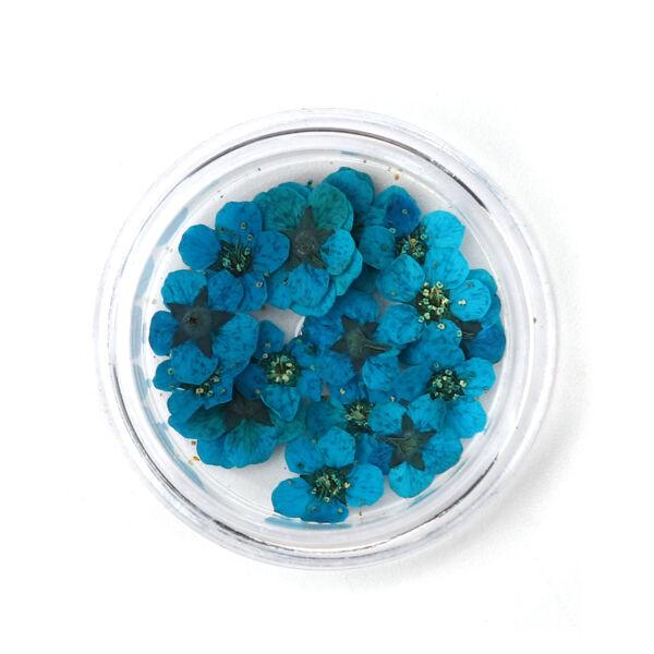 Nárcisz szárított virág csomag (20db)